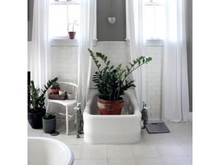До и После: Озеленение ванной комнаты