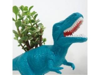 Урок истории комнатных растений