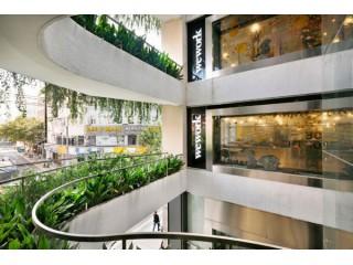 Растения для торговых центров